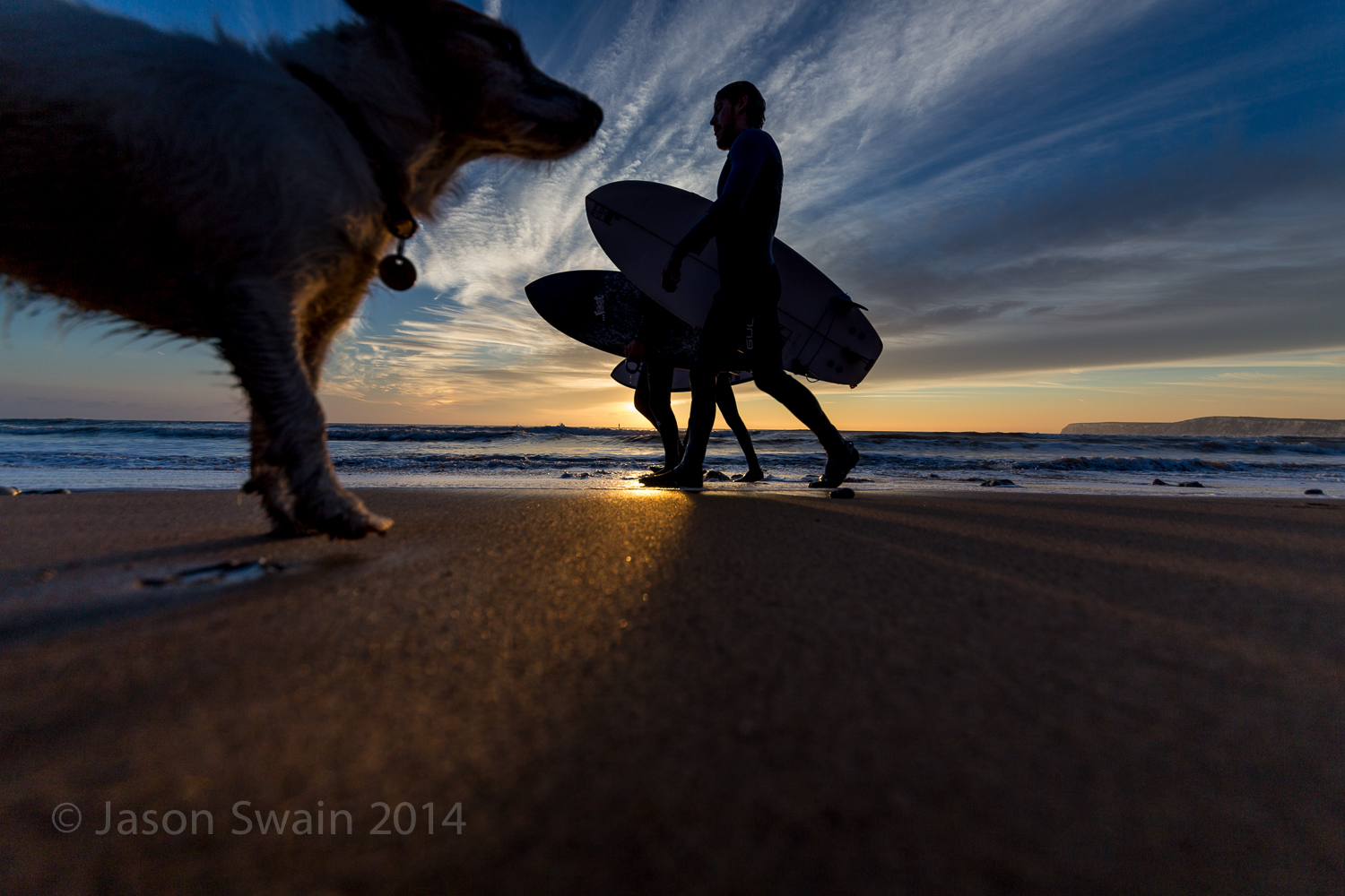 The Giant Surfing Dog Photobomb Incident.