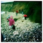 Beach Clean Team